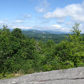 mountain scene of the Blue Ridge Mountains from Flat Top